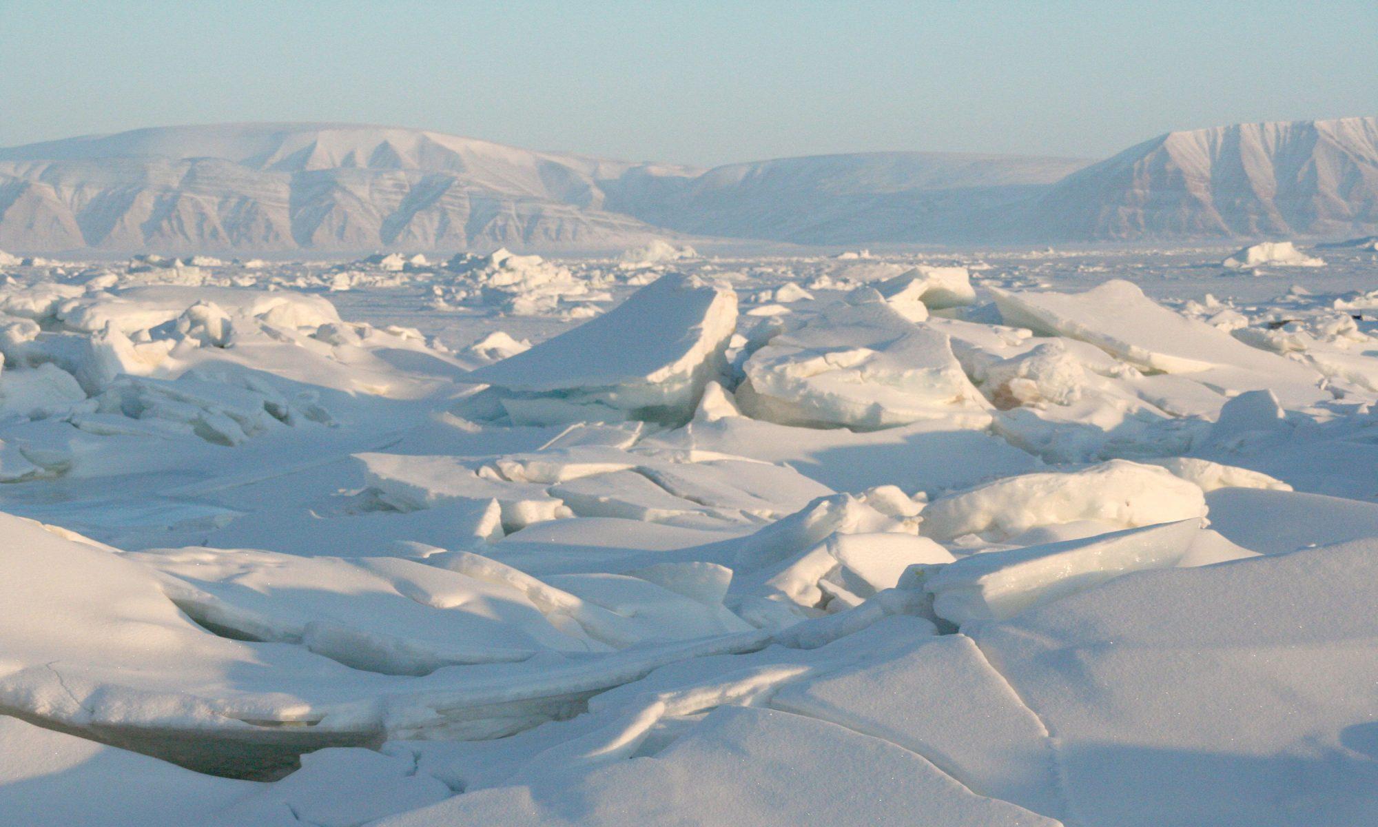 ArcticCapital